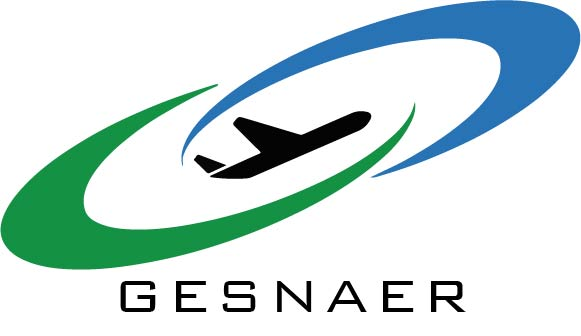 GesNaer Consulting